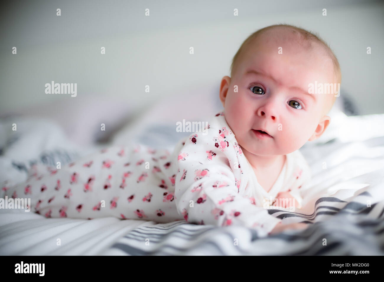 Four months old baby girl on a bed looking at camera in sunny bedroom. - Stock Image