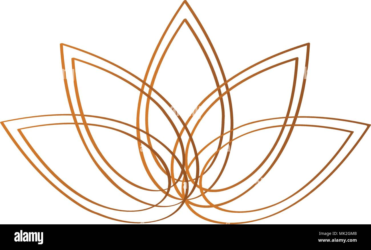 A Lotus Flower Stock Vector Images Page 2 Alamy