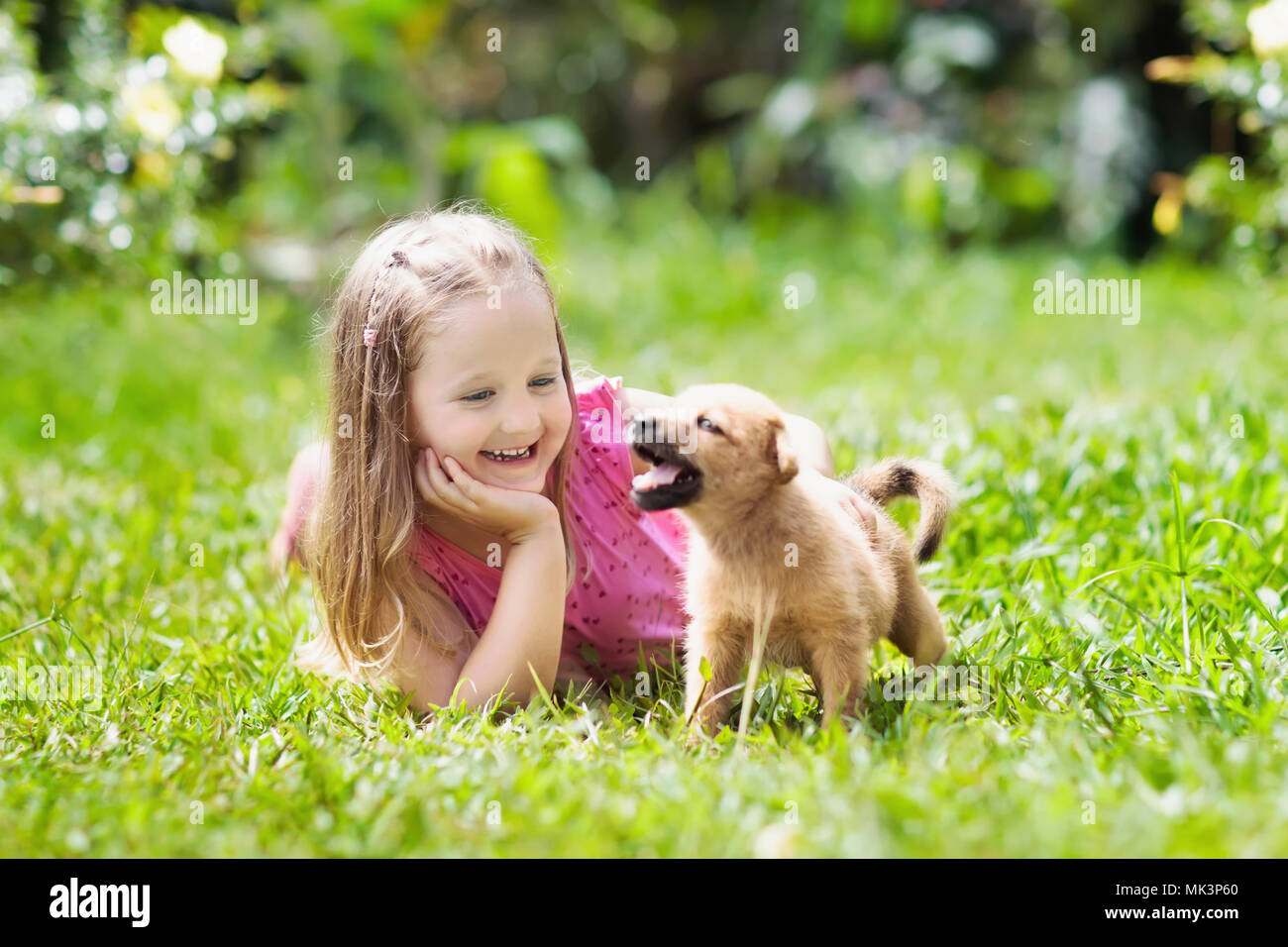 Kids Play With Cute Little Puppy Children And Baby Dogs Playing In Sunny Summer Garden Little Girl Holding Puppies Child With Pet Dog Family And P Stock Photo Alamy