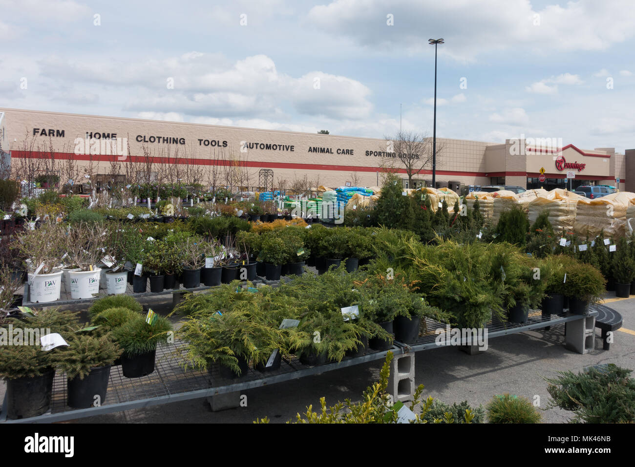 A Runnings Supply Location In Gloversville, NY USA Showing Their Selection  Of Trees And Shrubs