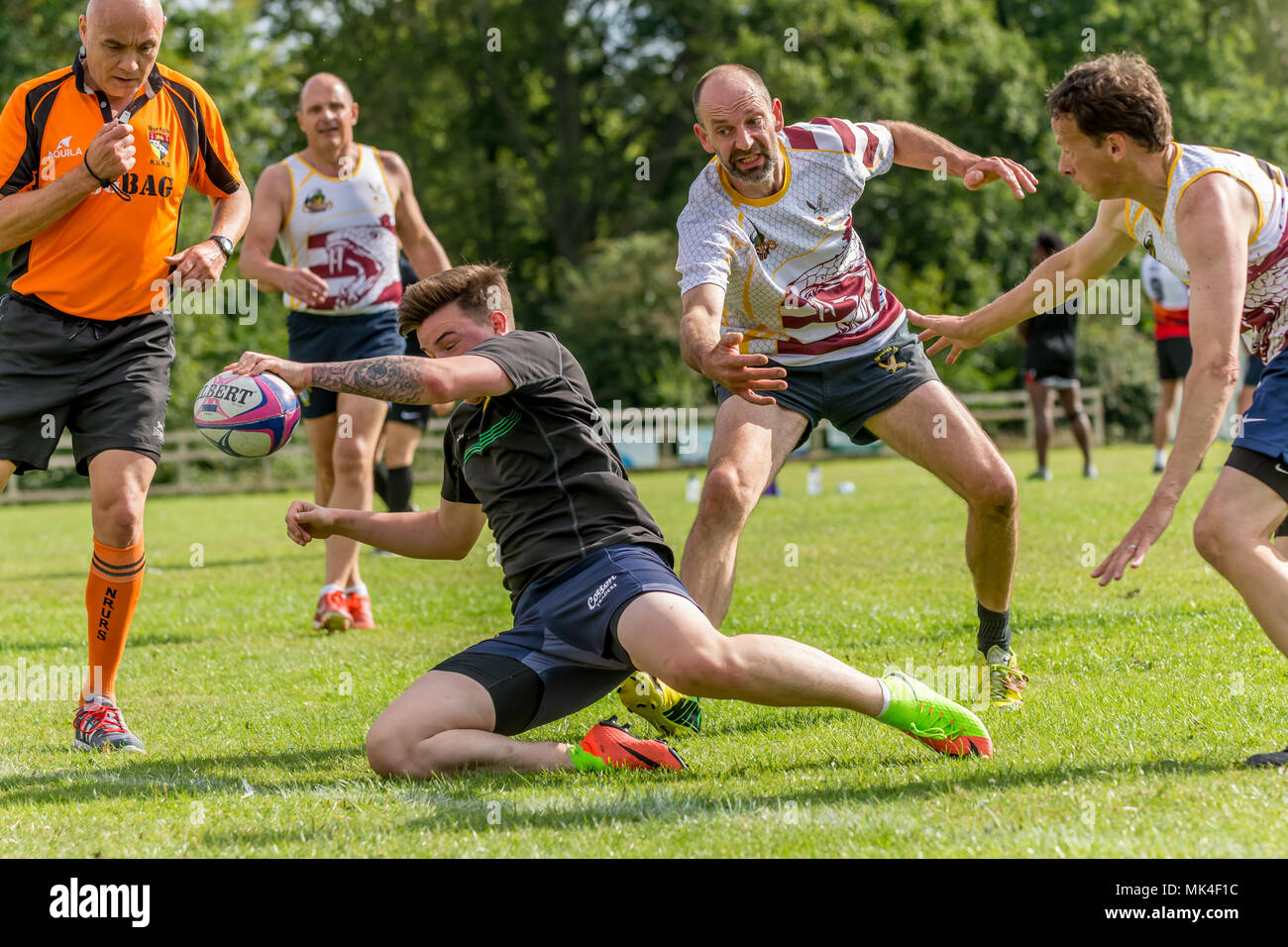 Amateur rugby touch tournament - players scoring a try with tacklers and referee close by - Stock Image