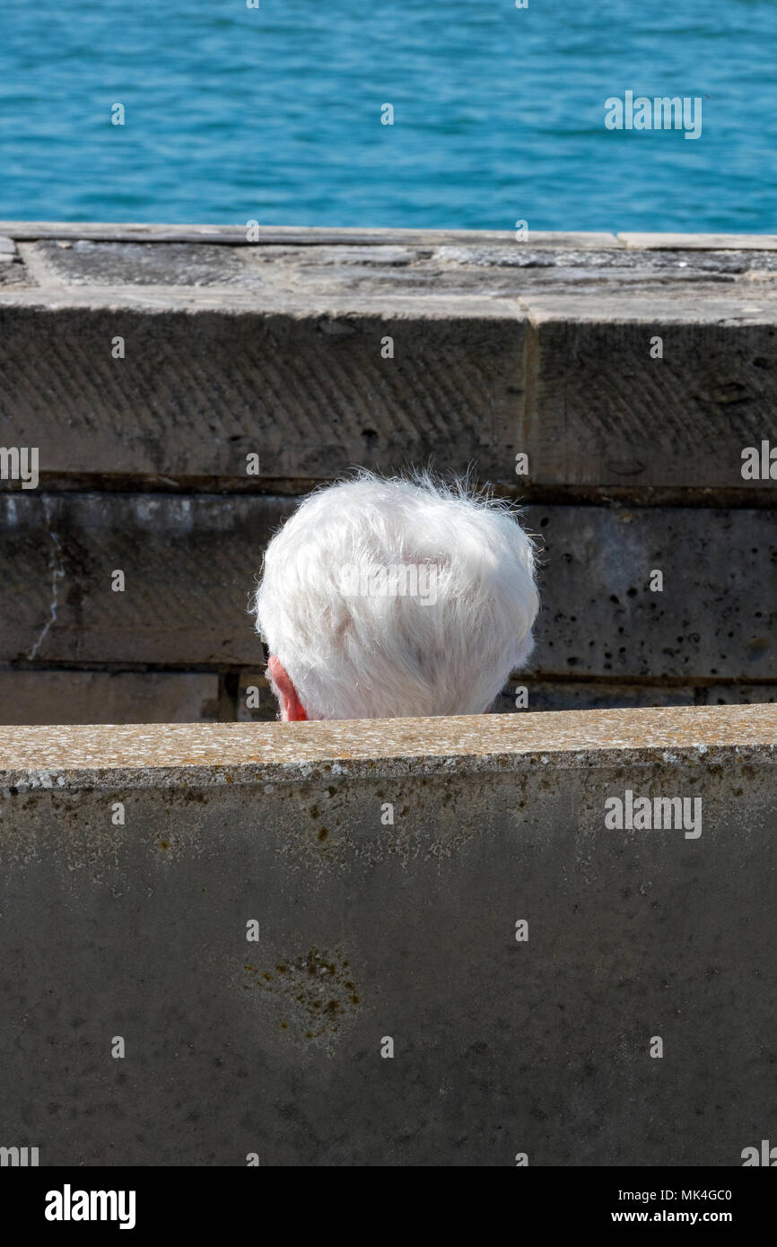 An older person with silver or grey white hair sitting behind a wall at the seaside with just their head showing. Ageing person showing white silver. - Stock Image