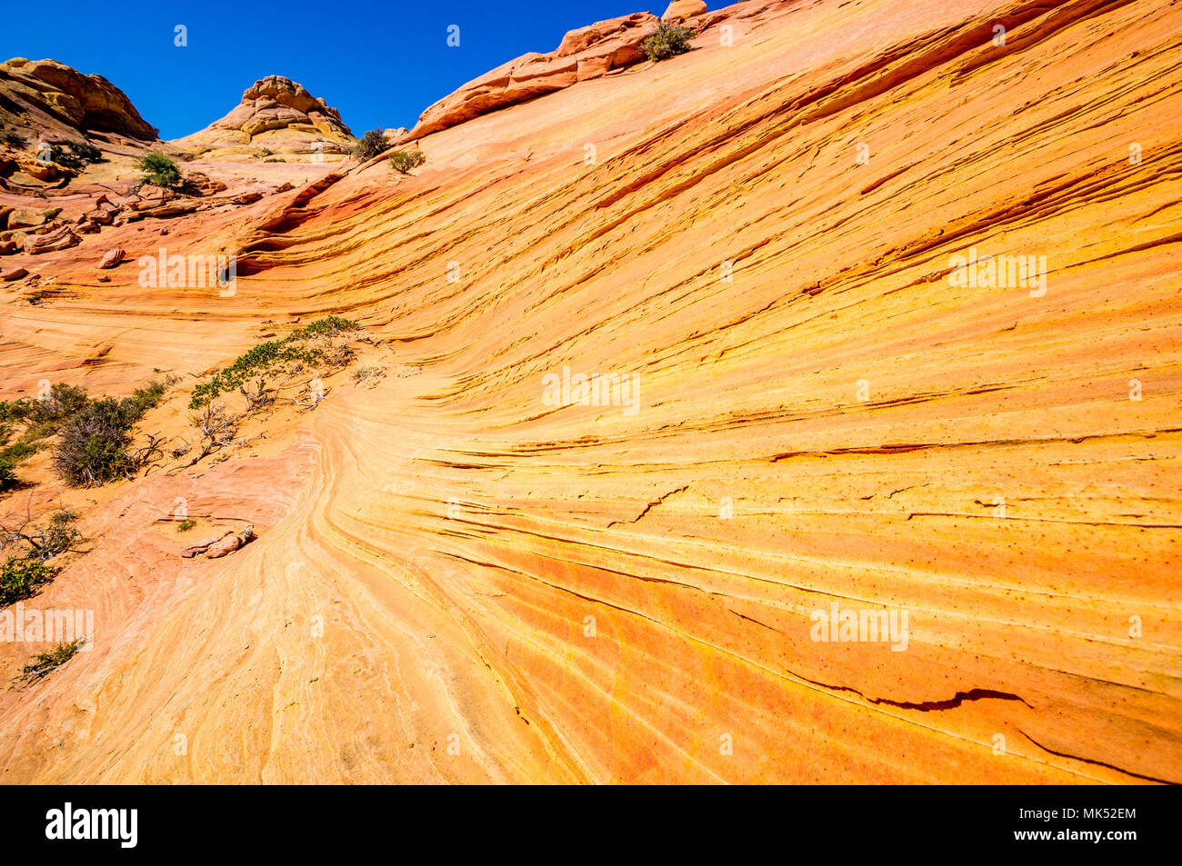 Colorful red and gold stripes in sandstone cliff formation Cottonwood access area South Coyote Buttes Vermilion Cliffs National Monument Arizona USA Stock Photo