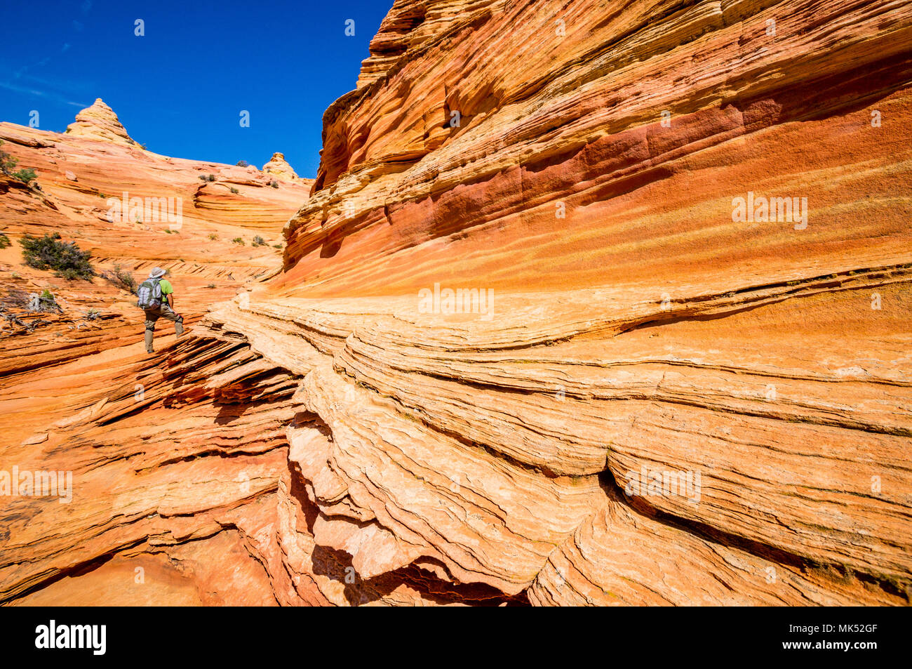 Male Hiker with pack small compared to colorful sandstone formations Cottonwood area South Coyote Buttes Vermilion Cliffs National Monument Arizona - Stock Image