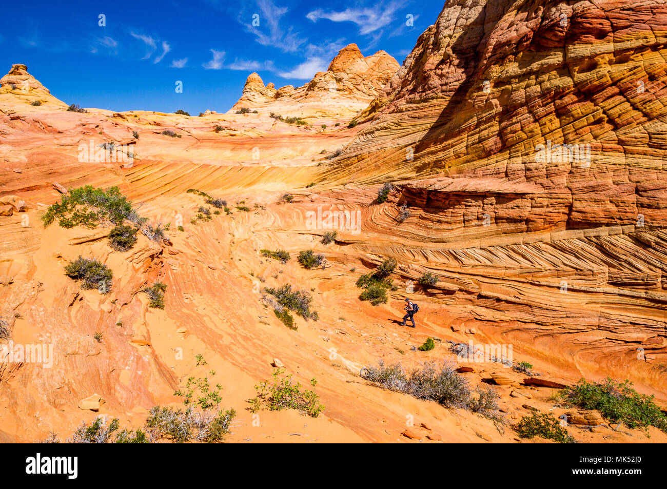 Colorful sandstone formations Cottonwood access area South Coyote Buttes Vermilion Cliffs National Monument Arizona United States of America - Stock Image