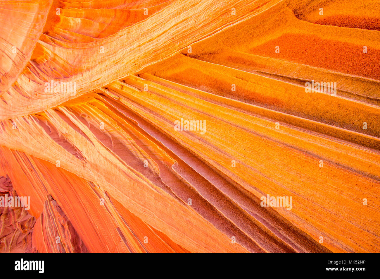 detailed view of Colorful sandstone patterns and fins Cottonwood access area South Coyote Buttes Vermilion Cliffs National Monument Arizona - Stock Image