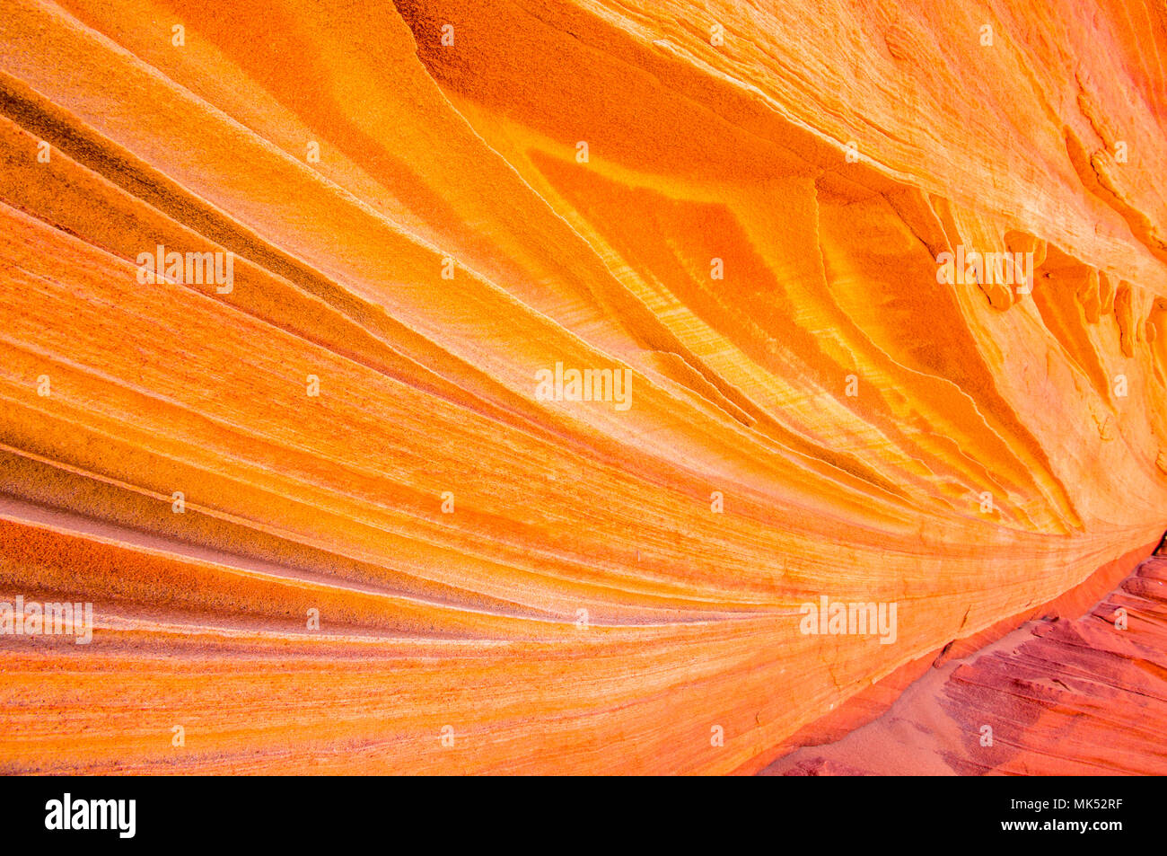 detailed view of Colorful sandstone patterns and fins Cottonwood access area South Coyote Buttes Vermilion Cliffs National Monument Arizona Stock Photo