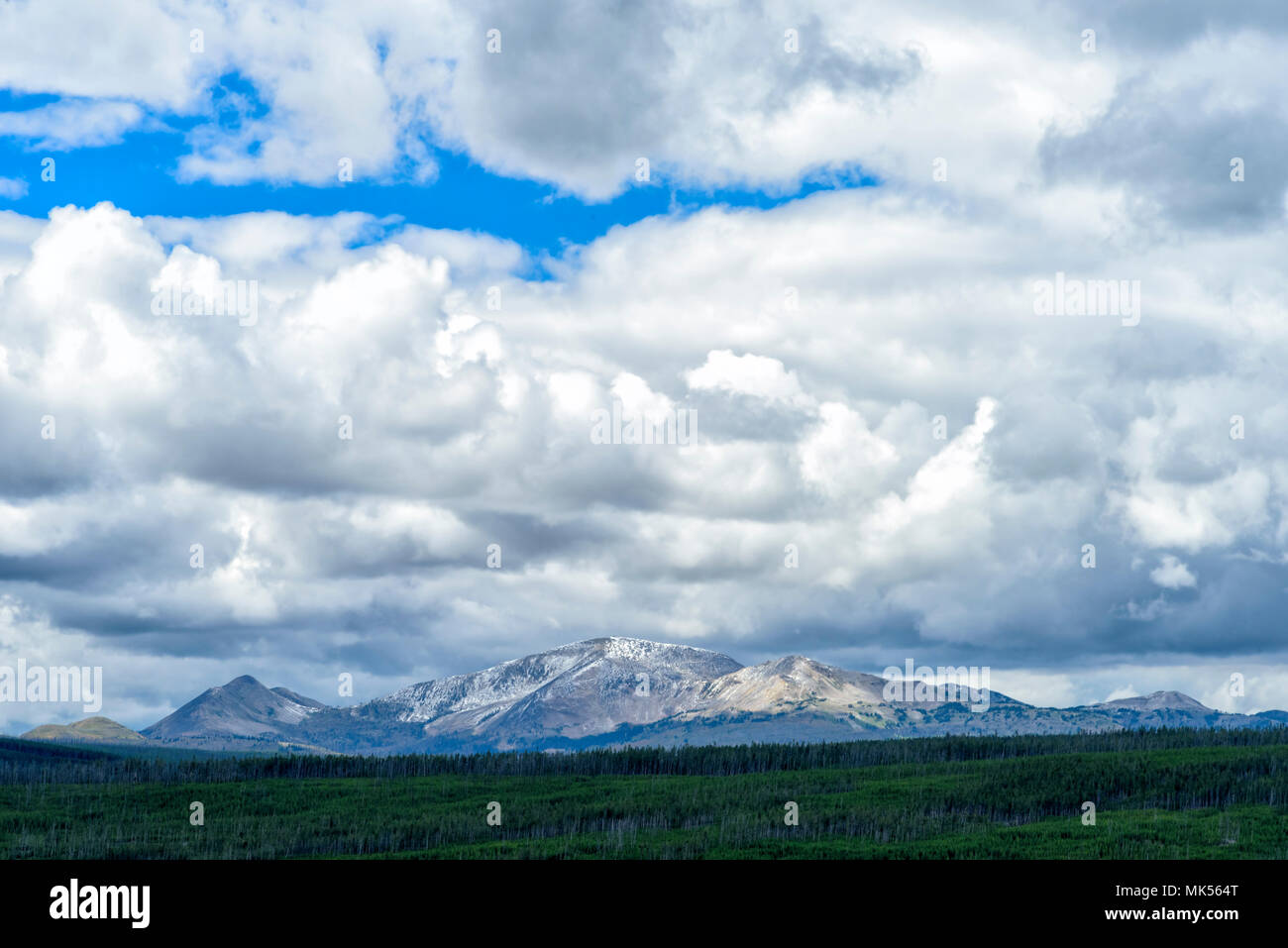 Looking out over a green forest and valley with tall snow capped mountains in the background under a blue sky with white fluffy clouds. - Stock Image