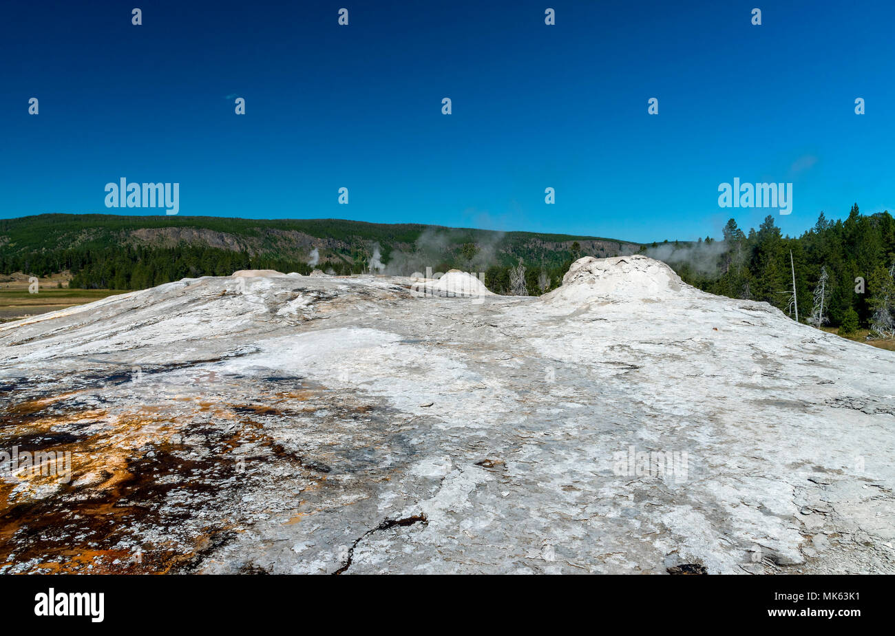 Geothermal steam vents, barren ground with green forest beyond under a bright blue sky. - Stock Image