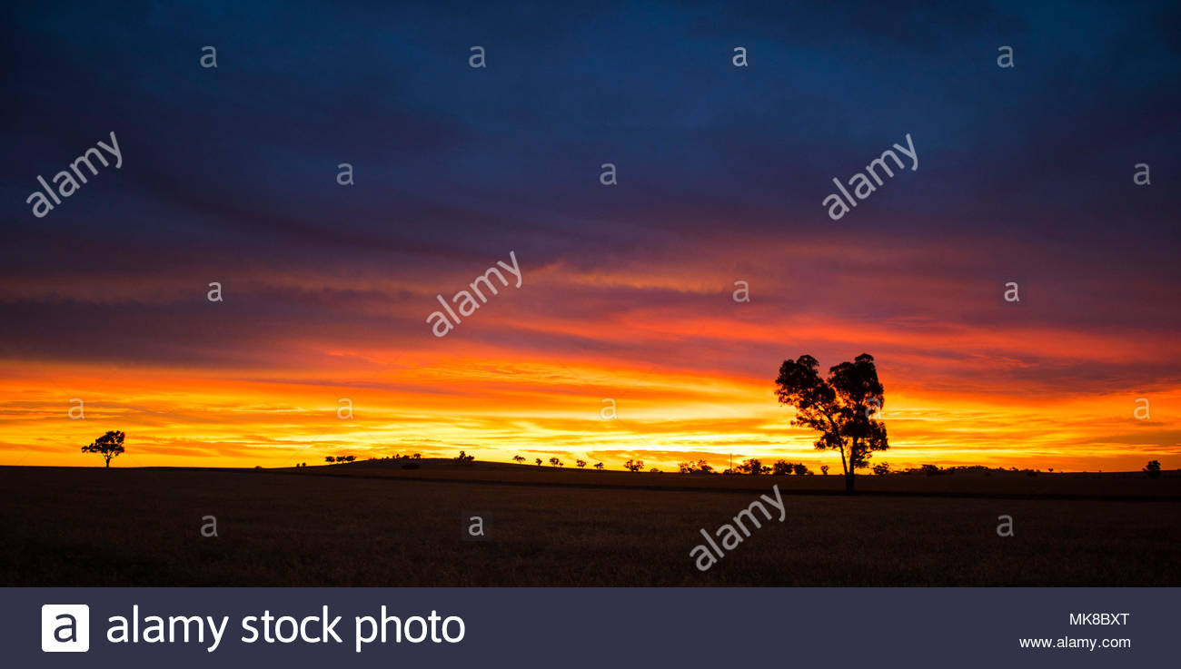 Australian Farm Sunset. - Stock Image