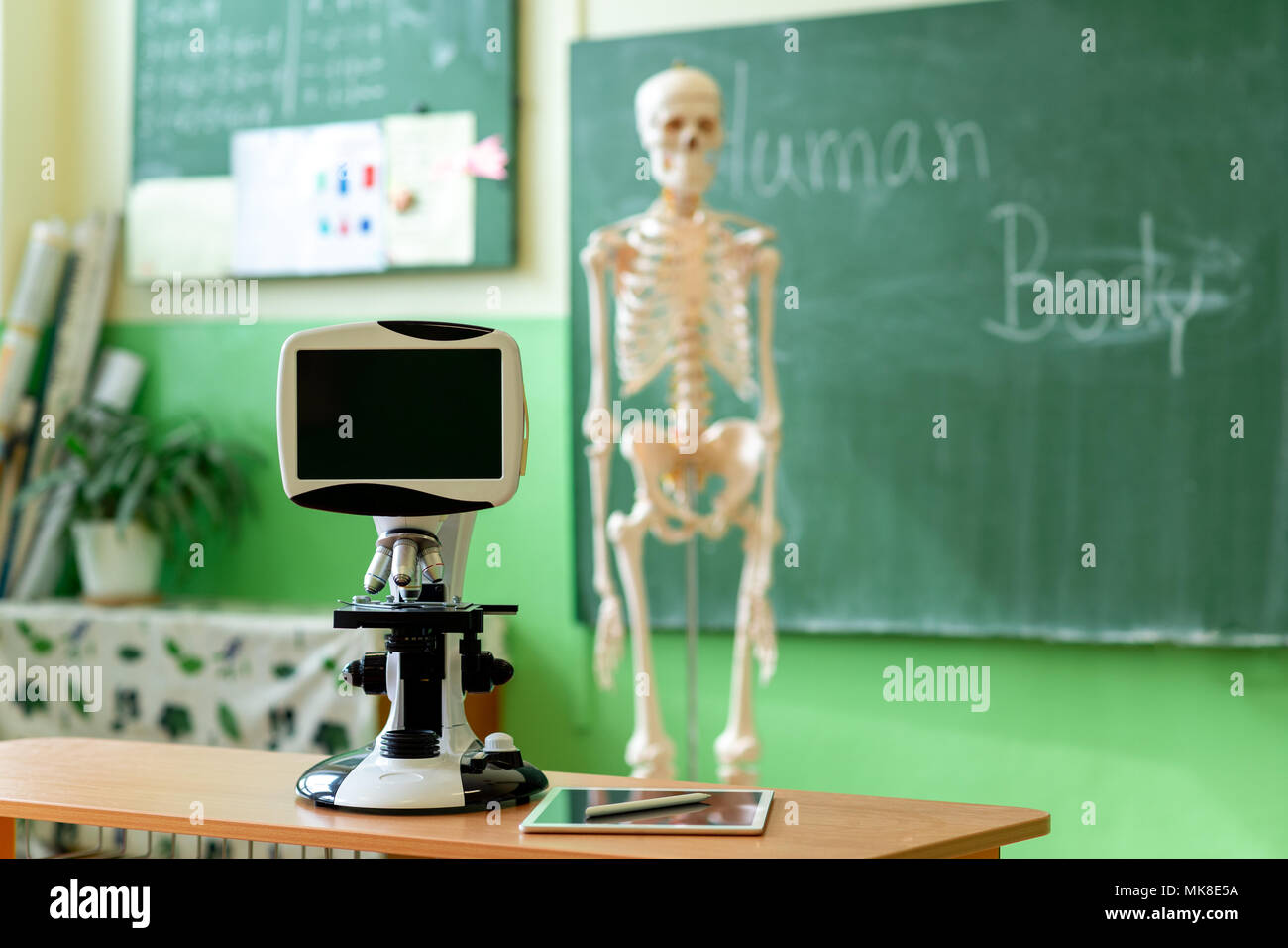 Biology classroom. Artificial human body skeleton, student desk with microskope and digital tablet. Anatomy teaching aid. Education and generation z c - Stock Image