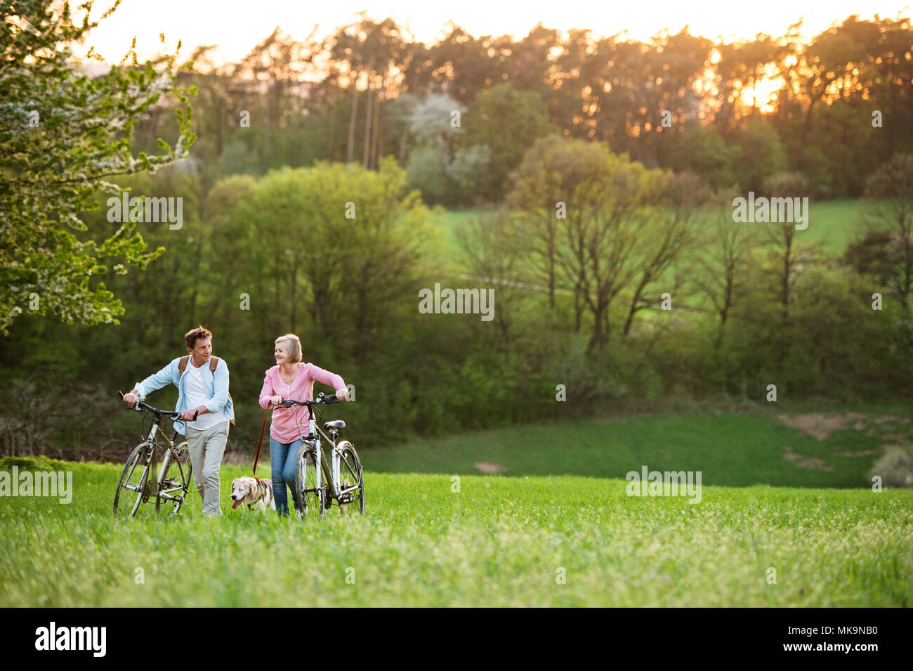Beautiful senior couple with bicycles and dog outside in spring nature. - Stock Image