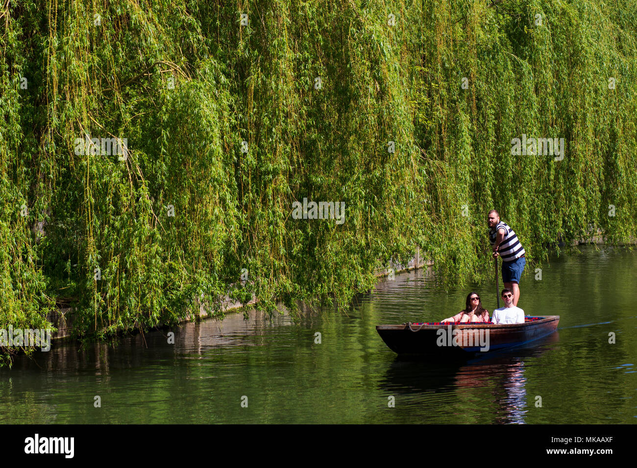 Cambridge, UK. 7th May, 2018. Tourists enjoy the bank holiday sunshine along the River Cam in Cambridge, England. CamNews / Alamy Live News - Stock Image