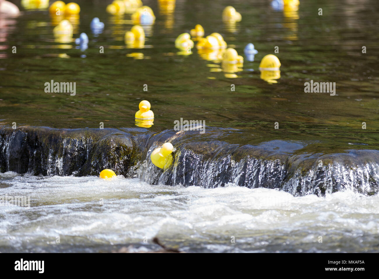 Richmond, North Yorkshire, UK. Monday 7th May, 2018. Organised by ...