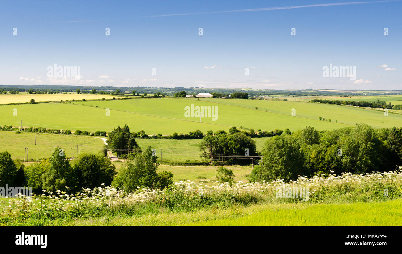 Agricultural fields and chalk downland around the sparsely populated Tarrant Valley in England's Dorset Downs hills. - Stock Image