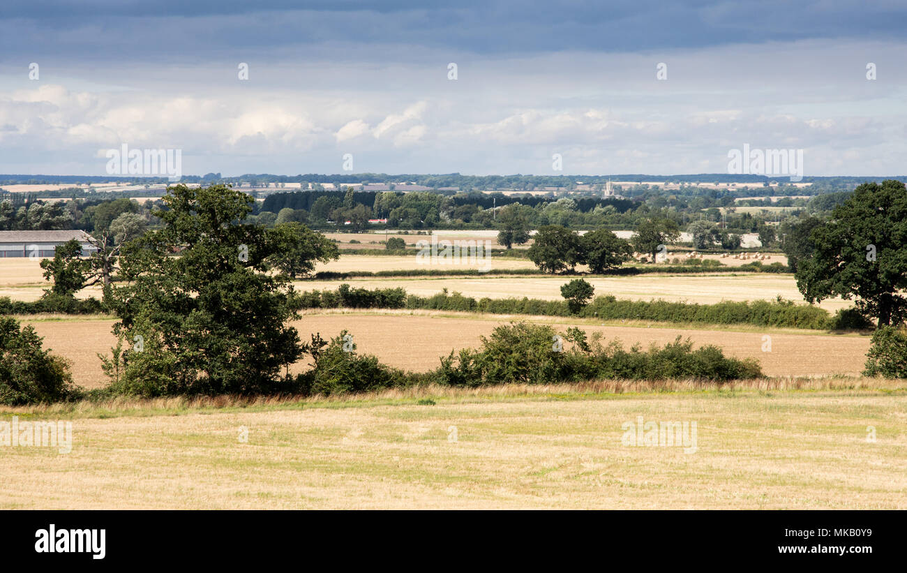 Fields of crops and pasture are interspersed with copice woodland in the patchwork agricultural landscape of England's Nene Valley in Northamptonshire - Stock Image