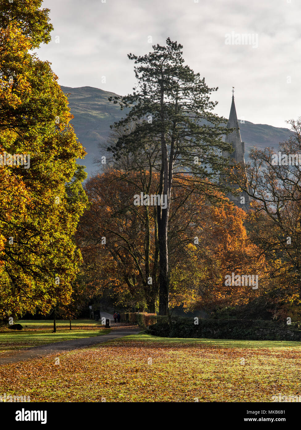 The spire of Ambleside Parish Church can be seen through the autumn leaves of trees in Rothay Park, in England's Lake District National Park. - Stock Image