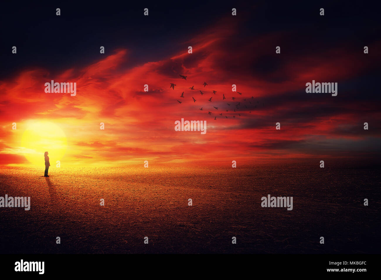 Surreal scenery view as a girl silhouette on the beautiful sunset background watching at a flock of birds flying up in the sky. Life journey concept. - Stock Image