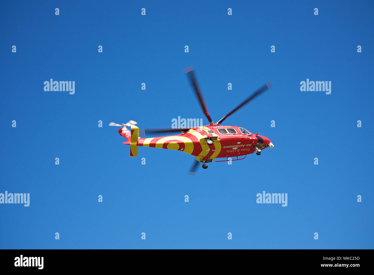 The Essex and Herts Air Ambulance an Augusta Westland 169 helicopter transporting a patient to Colchester General Hospital. Stock Photo
