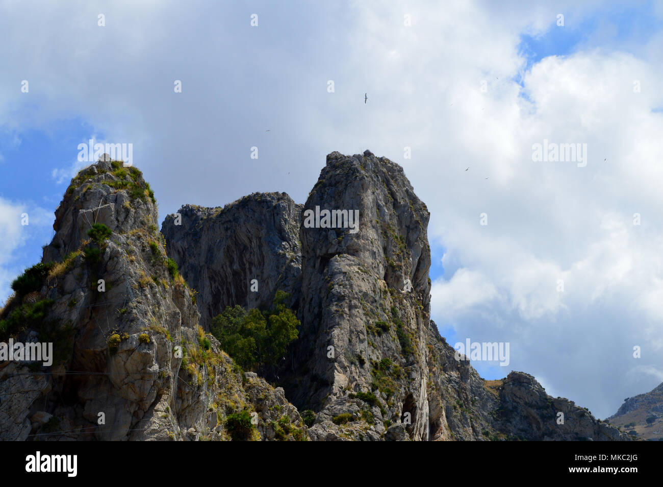 Typical Rocky Wall of the Palermo Mountains, Sicily, Italy, Europe - Stock Image
