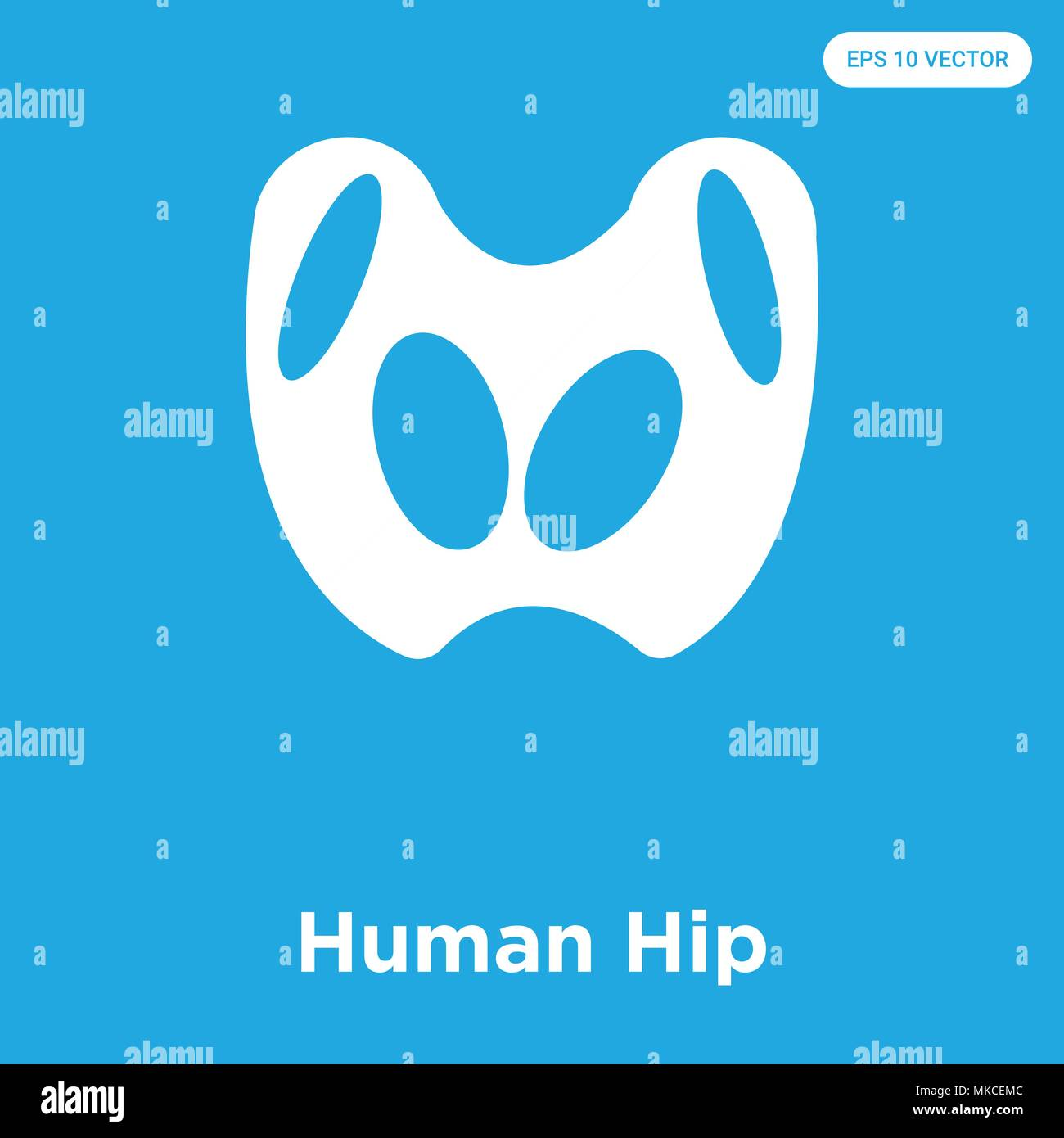 Human Hip Vector Icon Isolated On Blue Background Sign And Symbol