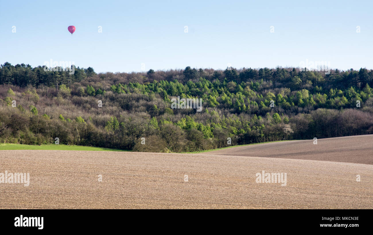 A hot air balloon floats over Wendover Woods and ploughed fields in the Hale in England's Chiltern Hills. - Stock Image