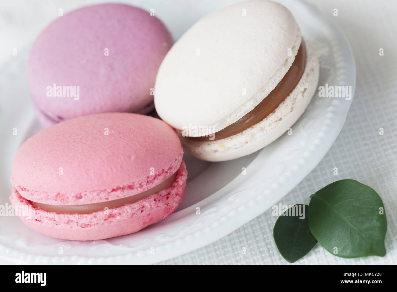 Pink, white and violet Macaroons close-up in white plate, spring green petals, tender pastel background. Soft focus. Romantic morning, gift for beloved - Stock Image