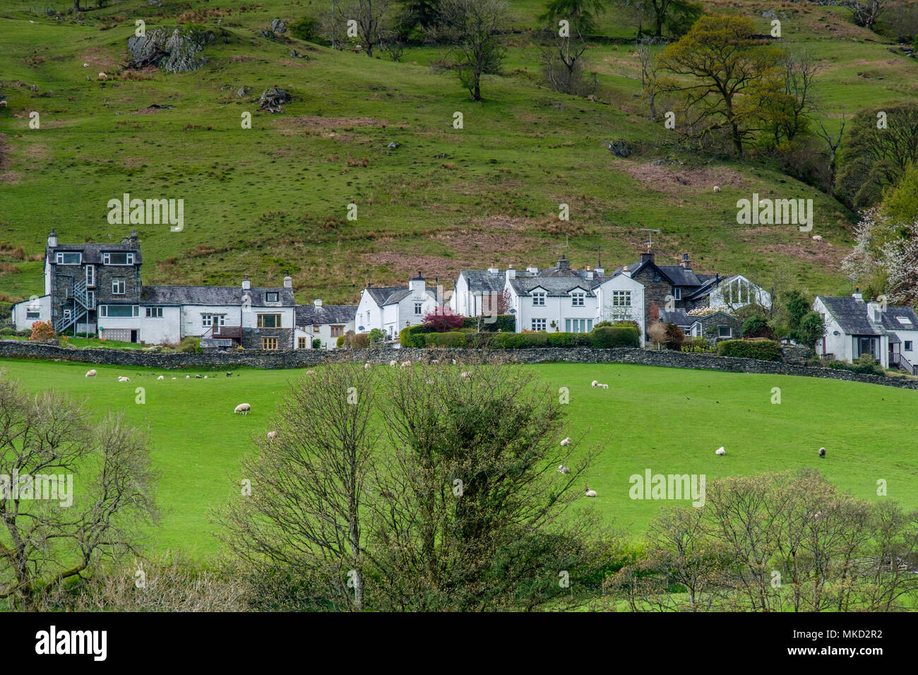 Cottages in Troubeck, near Windermere, Lake District, Cumbria - Stock Image