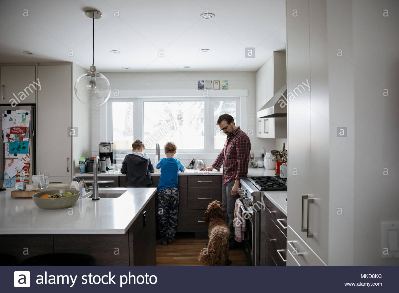 Dog watching father and sons doing dishes at kitchen sink - Stock Image
