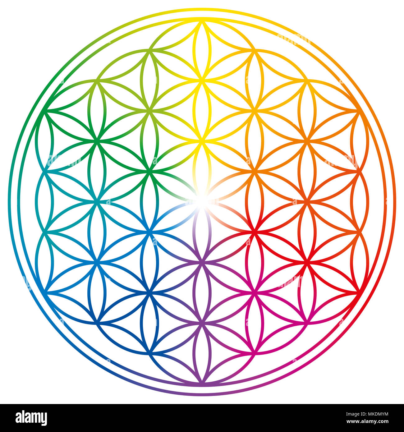 Flower of Life in rainbow colors  Geometrical figure