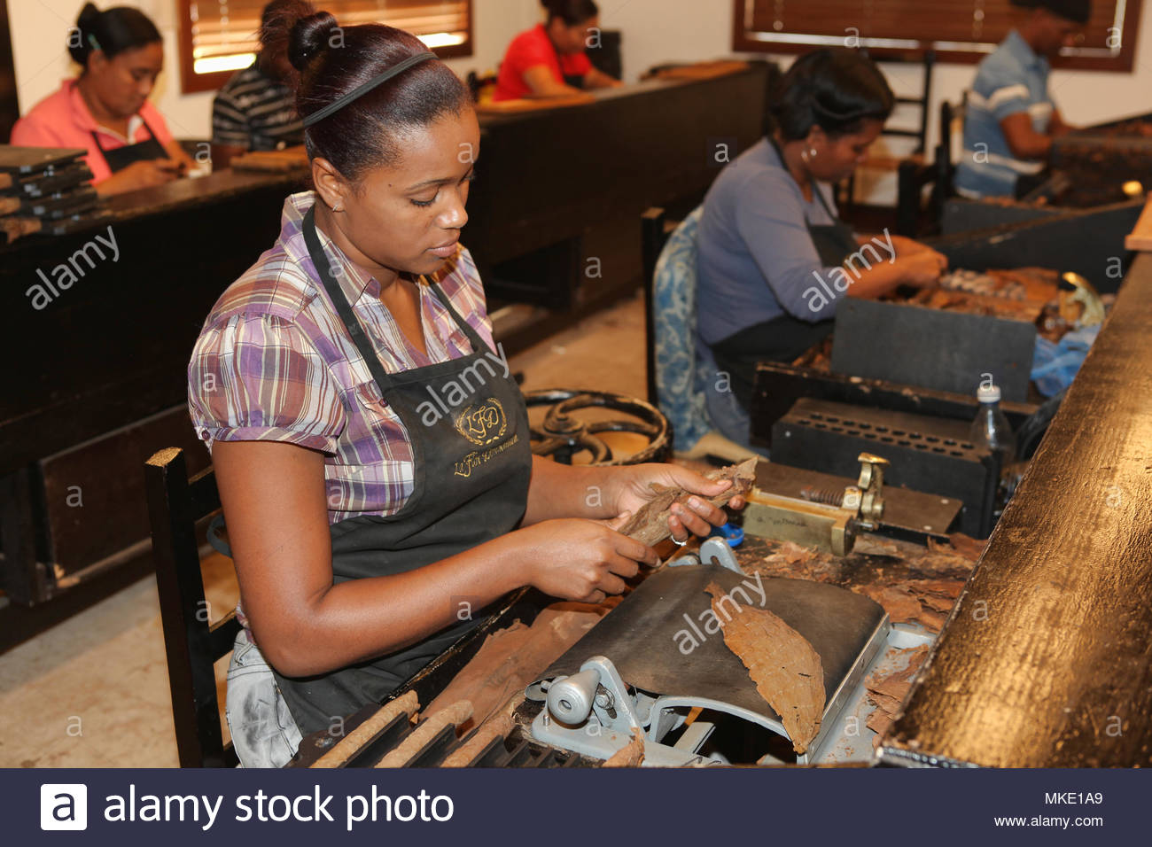 Workers roll and press cigars at the LaFlor Dominicana Cigar Factory in the Dominican Republic. - Stock Image