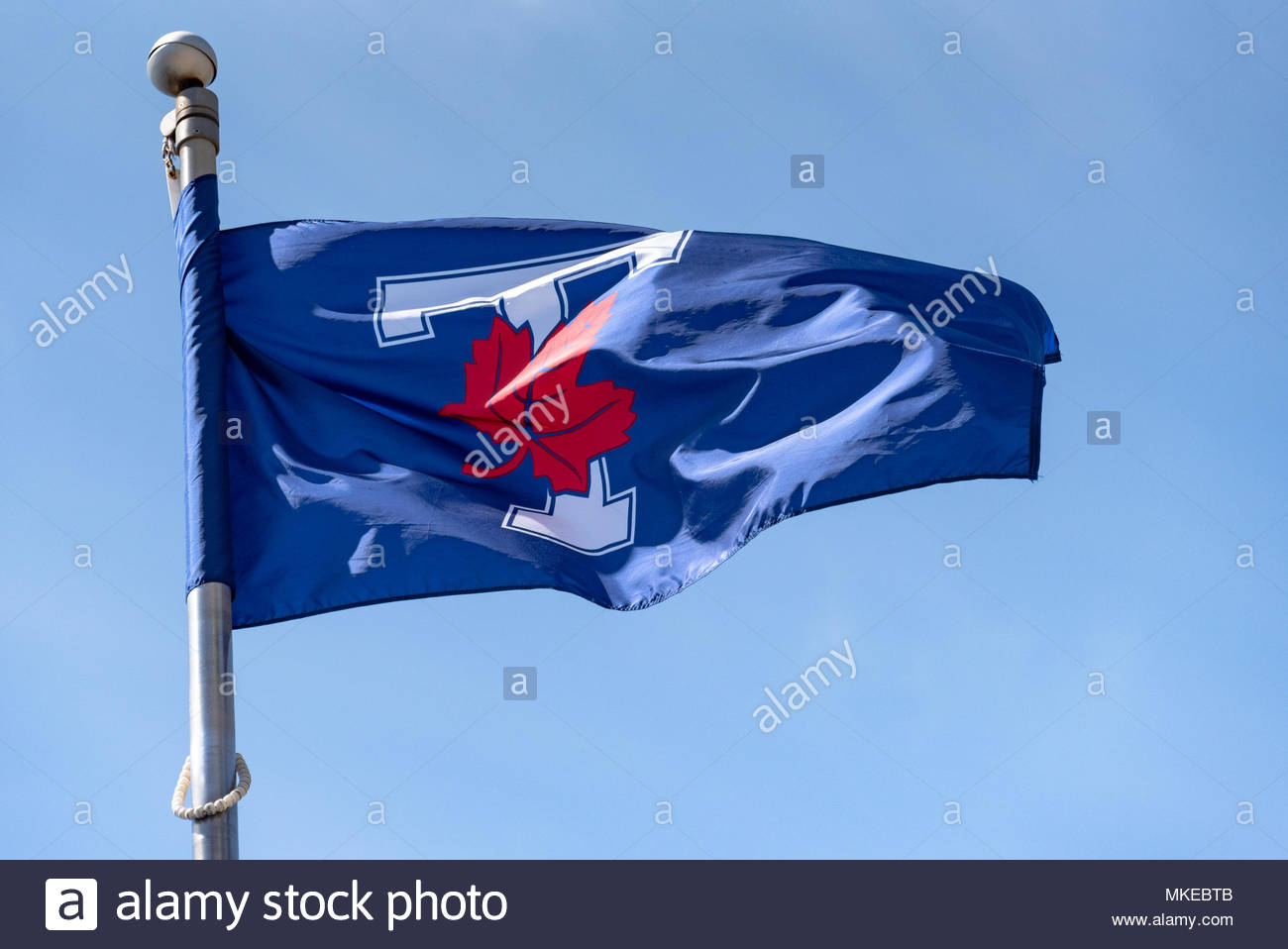 University of Toronto (U of T) Varsity Blues Flag waving on a blue clear sky. The Varsity Blues is a intercollegiate sports program in the Canadian ci - Stock Image
