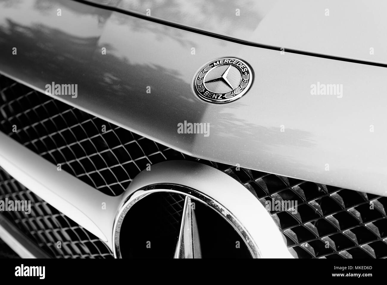 Front radiator of a Mercedes Benz - Stock Image
