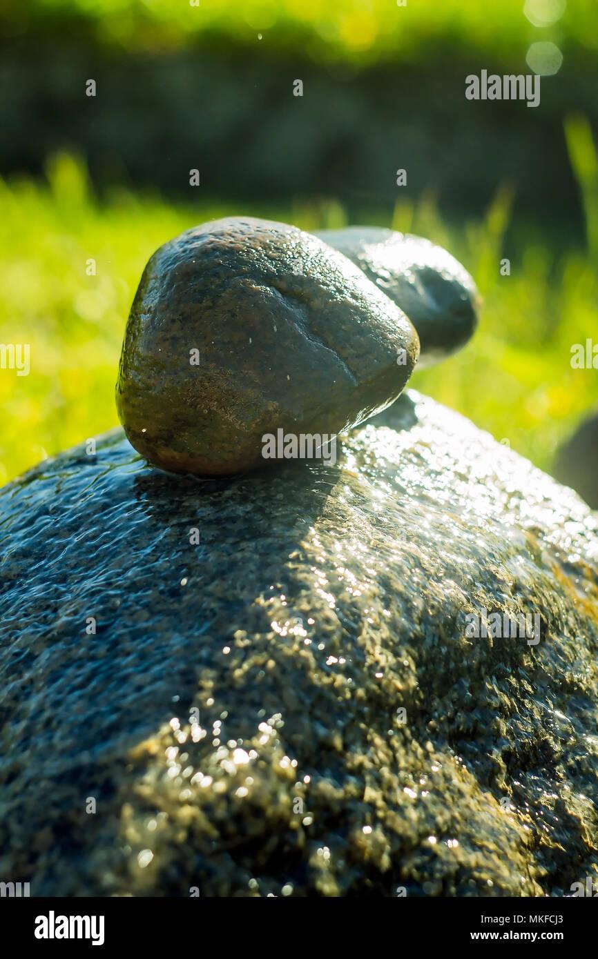Stones In The Garden Decorative stones in the garden stock photo 184121339 alamy decorative stones in the garden workwithnaturefo