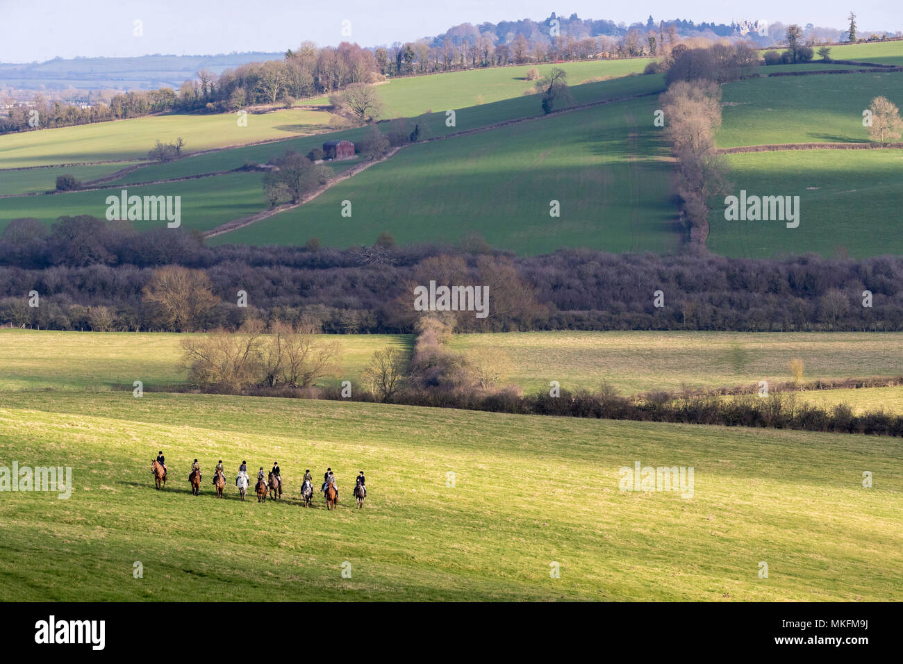 Fox hunting, Riders in the British countryside, England, Winter - Stock Image