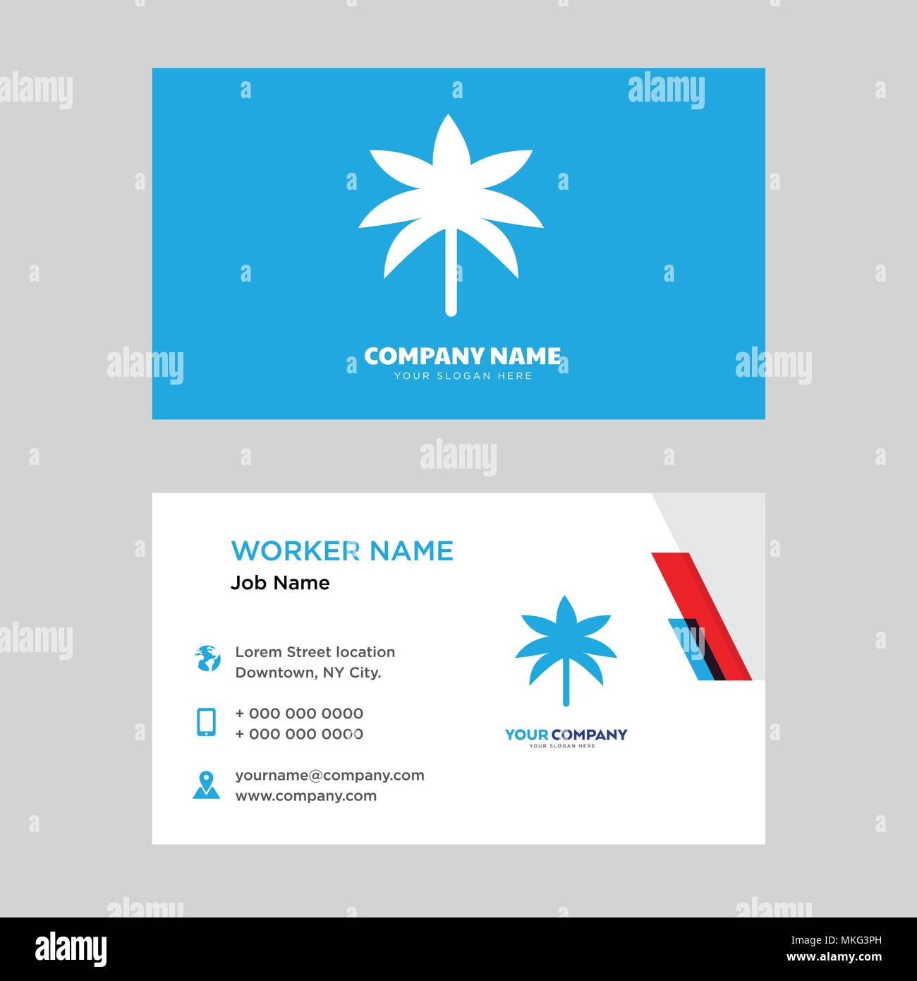Two palm trees business card design template visiting for your two palm trees business card design template visiting for your company modern horizontal identity card vector colourmoves