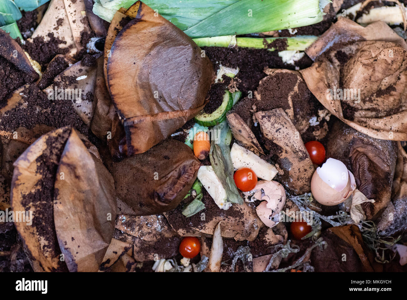 photo over a compost with leek tomatoes and coffee filters - Stock Image