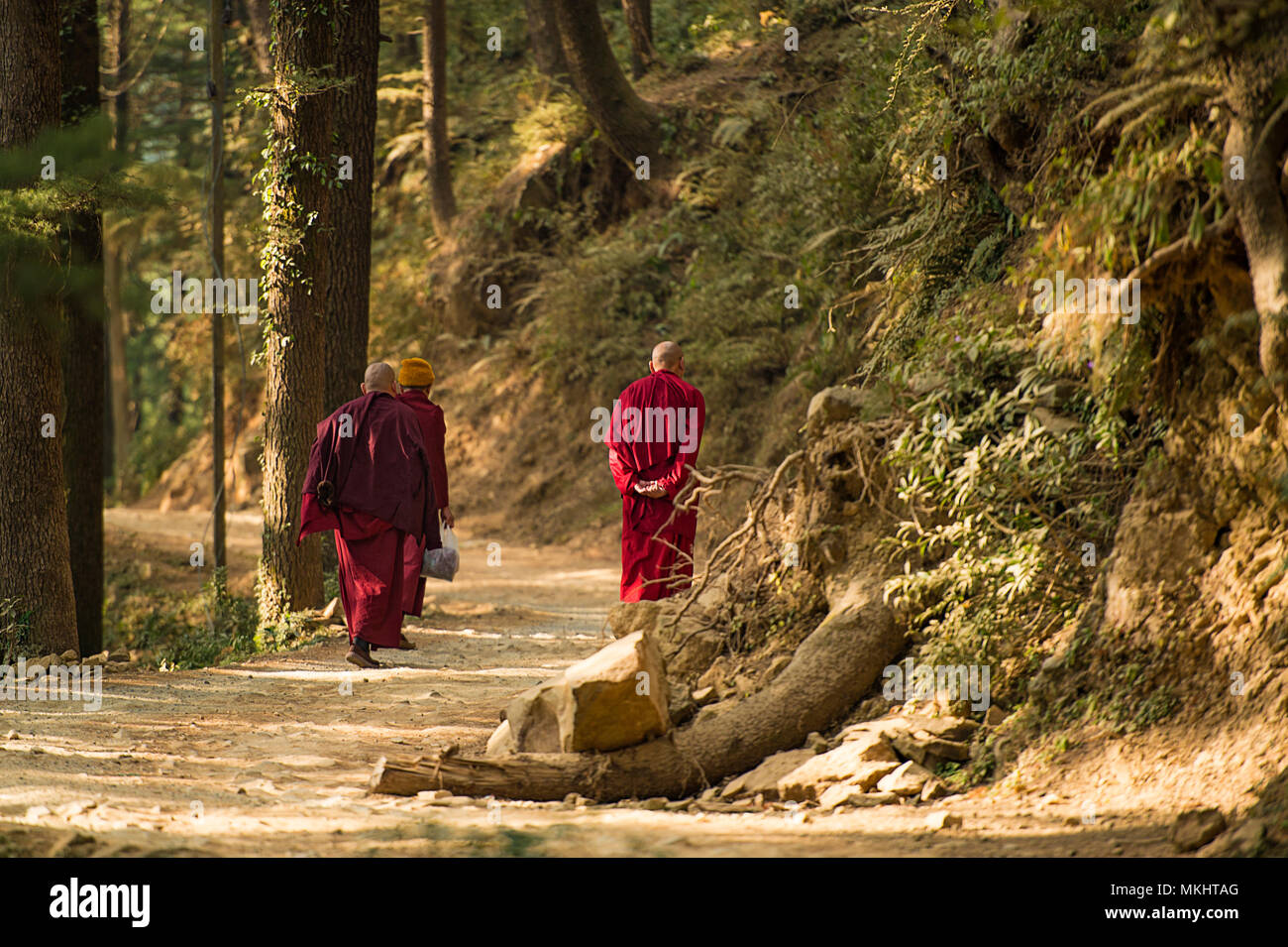 Three Buddhist monks are walking on a mountain trail in ...
