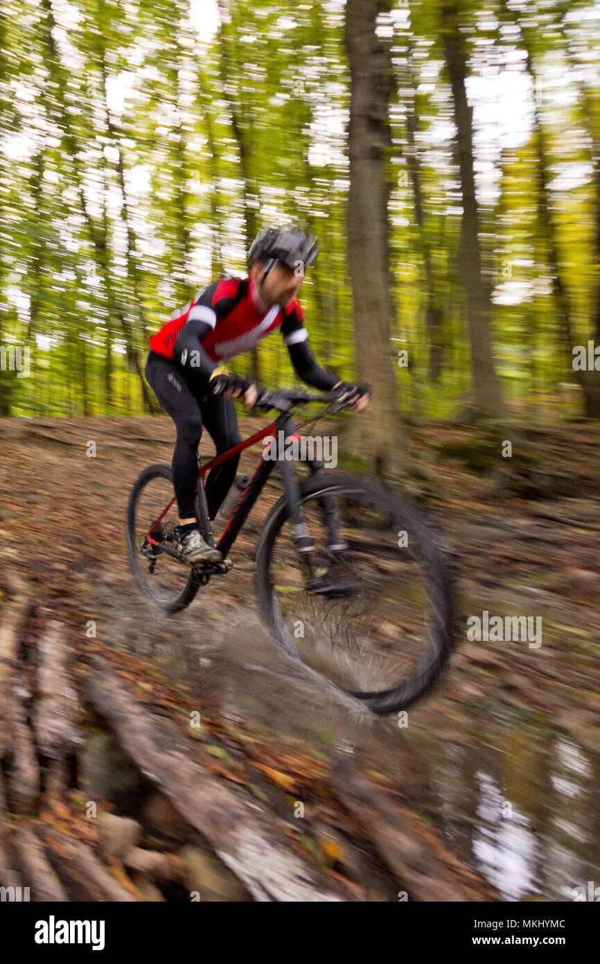 Mountainbiker in dark Vienna Woods rides fast offroad on carbon hardtail along trail through forest stream producing water splashes. - Stock Image