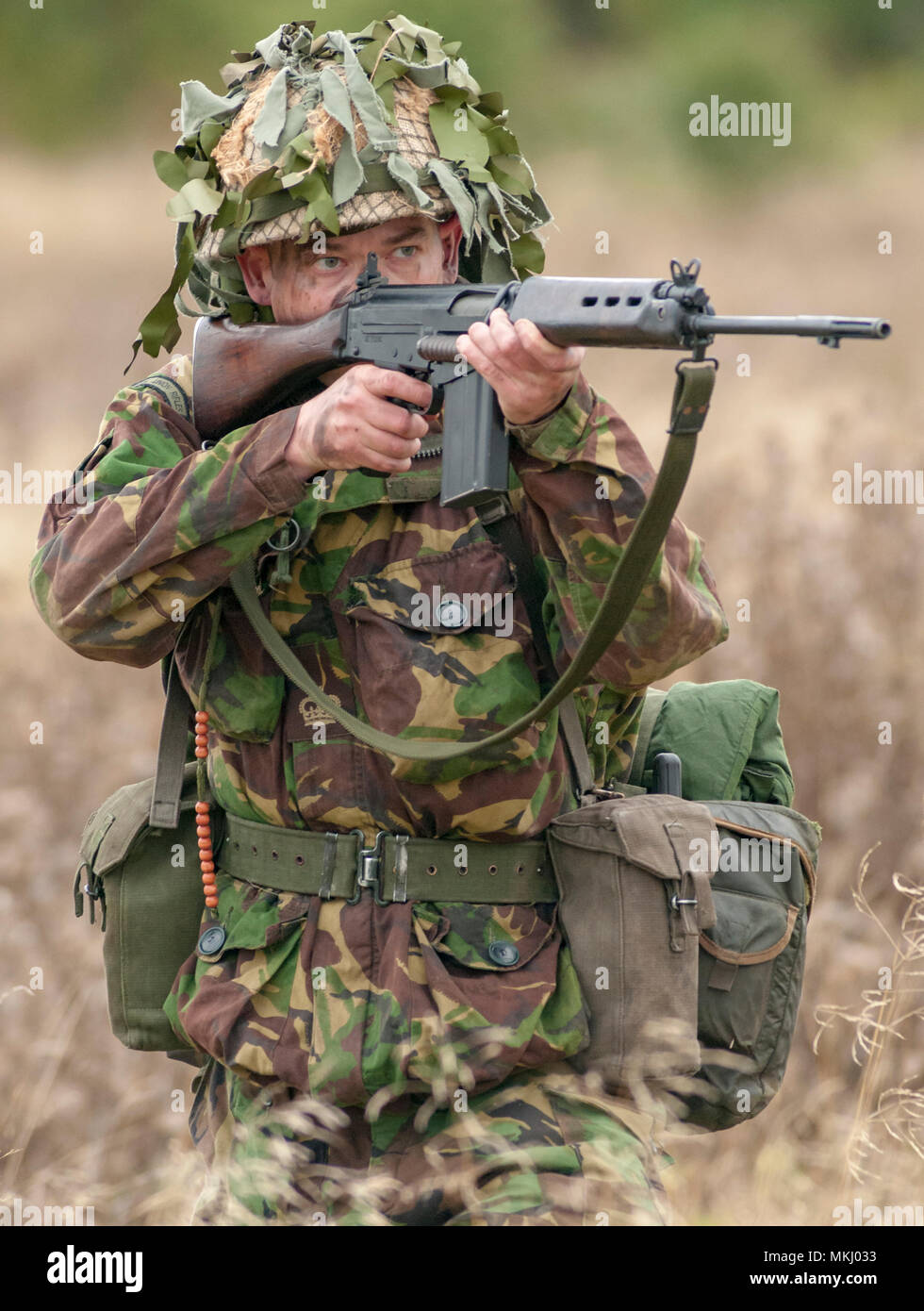 L1a1 Stock Photos & L1a1 Stock Images - Alamy