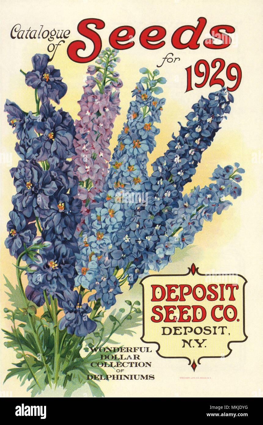 Tall Blue Flowers Stock Photo 184188244 Alamy