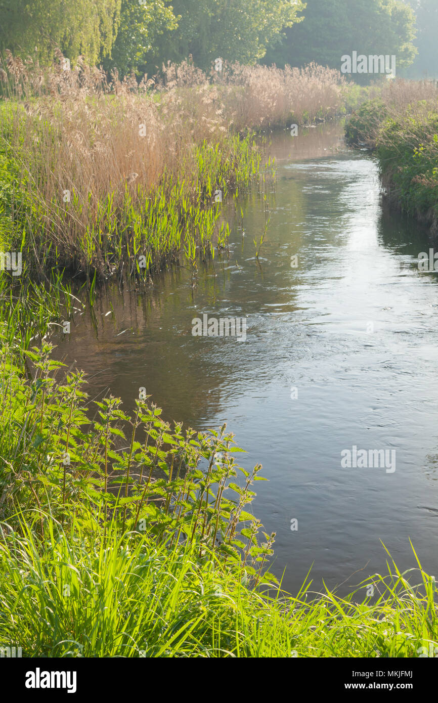 Bottesford Beck. Scunthorpe. 8th May, 2018. UK Weather: Early morning light on a stretch of Bottesford Beck, part of the Bottesford Beck Linear Park near Scunthorpe, Lincolnshire, UK. 8th April 2018. Credit: LEE BEEL/Alamy Live News - Stock Image