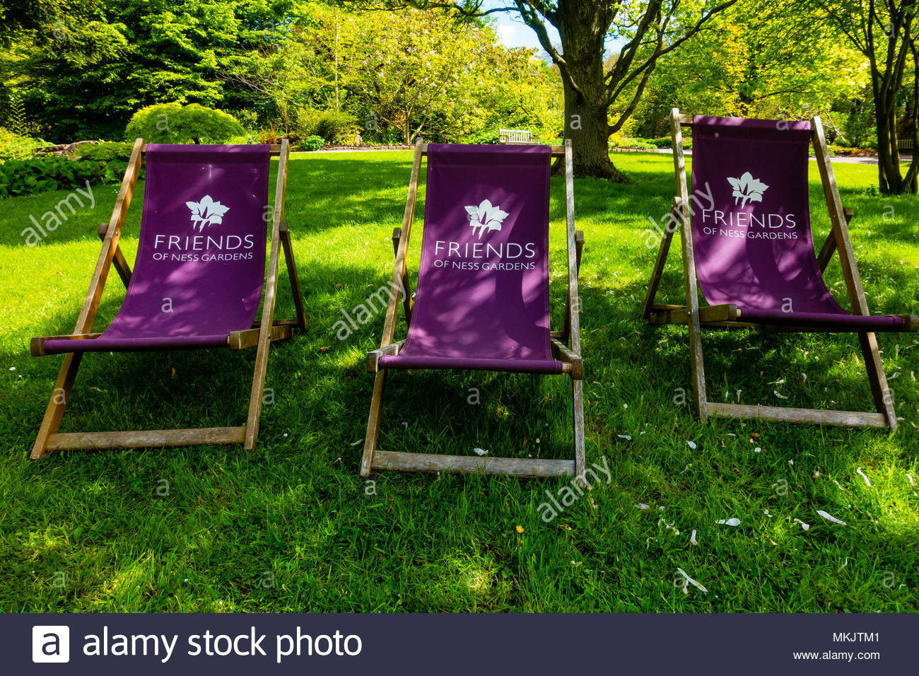 Friends of Ness Gardens deck chairs or sun loungers at The University of Liverpool's Ness Botanical  Gardens Ness Gardens, Ness, Wirral, Merseyside England UK Credit: Christopher Canty Photography/Alamy Live News Stock Photo