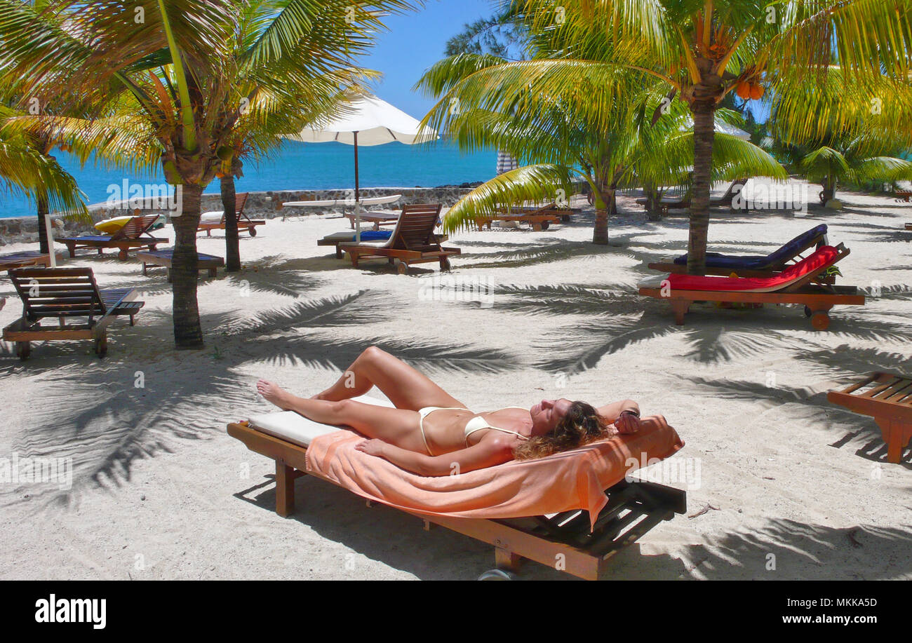junge Frau sonnt sich unter Palmen am Meer   young woman sunbathing under palmtrees on a lounger at a sandy beach Stock Photo
