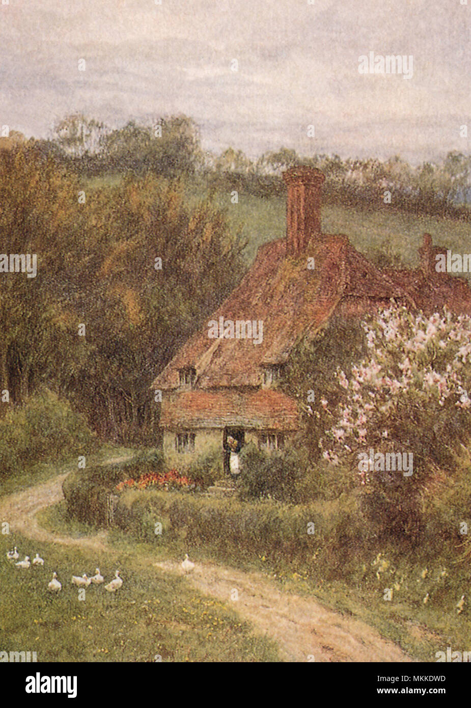 Country Cottage - Stock Image