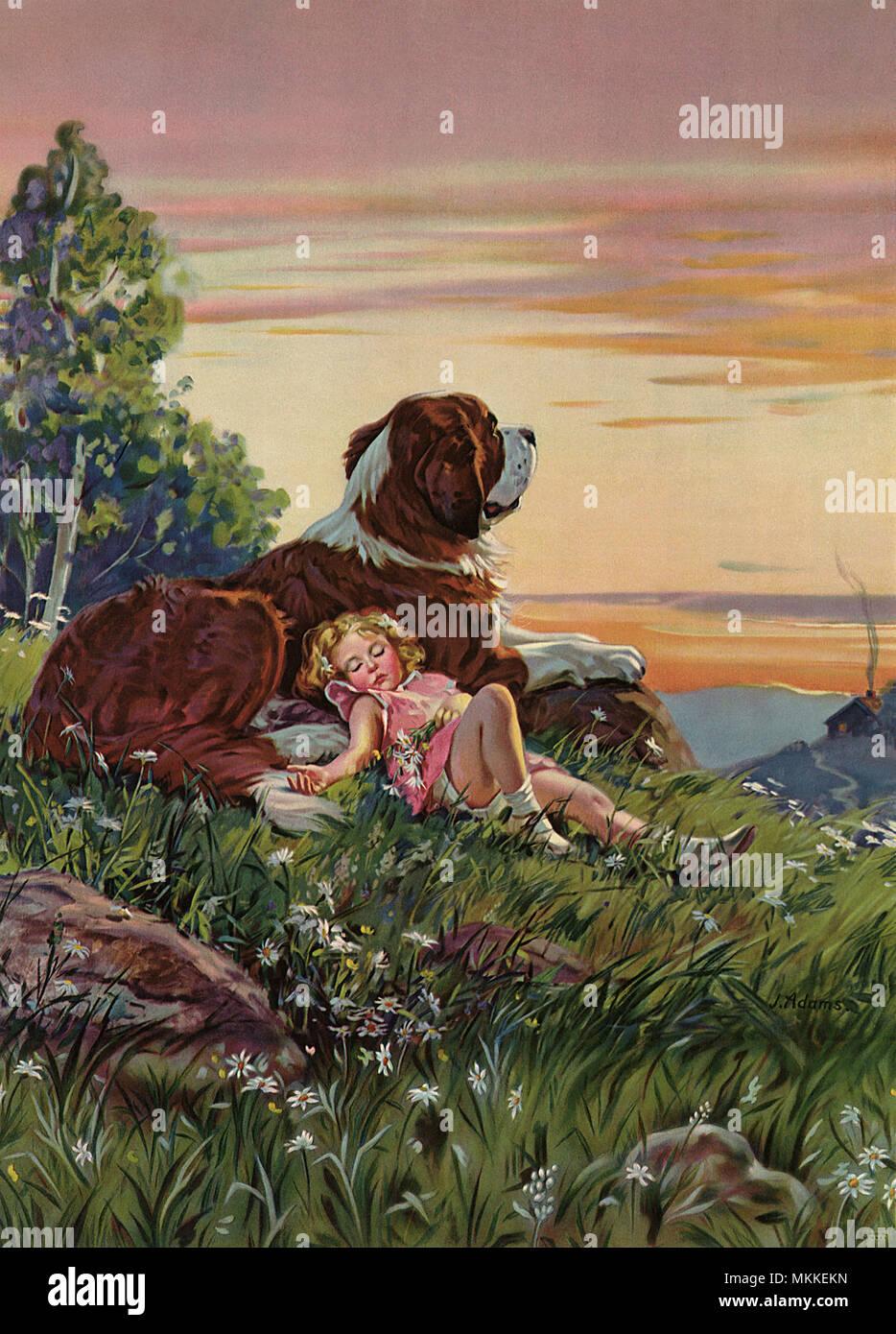 Girl Snoozes near Dog - Stock Image