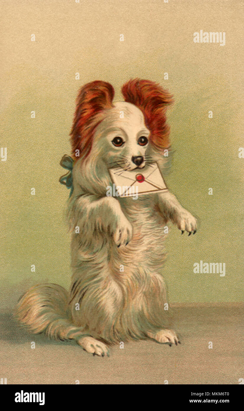 Pup With Birthday Wishes Stock Photo 184226560 Alamy