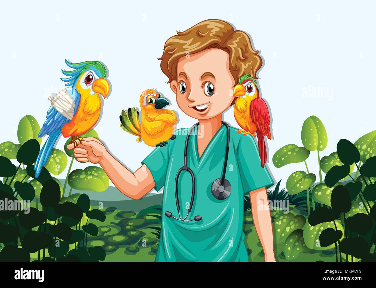 A Male Veterinarian Nurse and Parrots illustration - Stock Vector