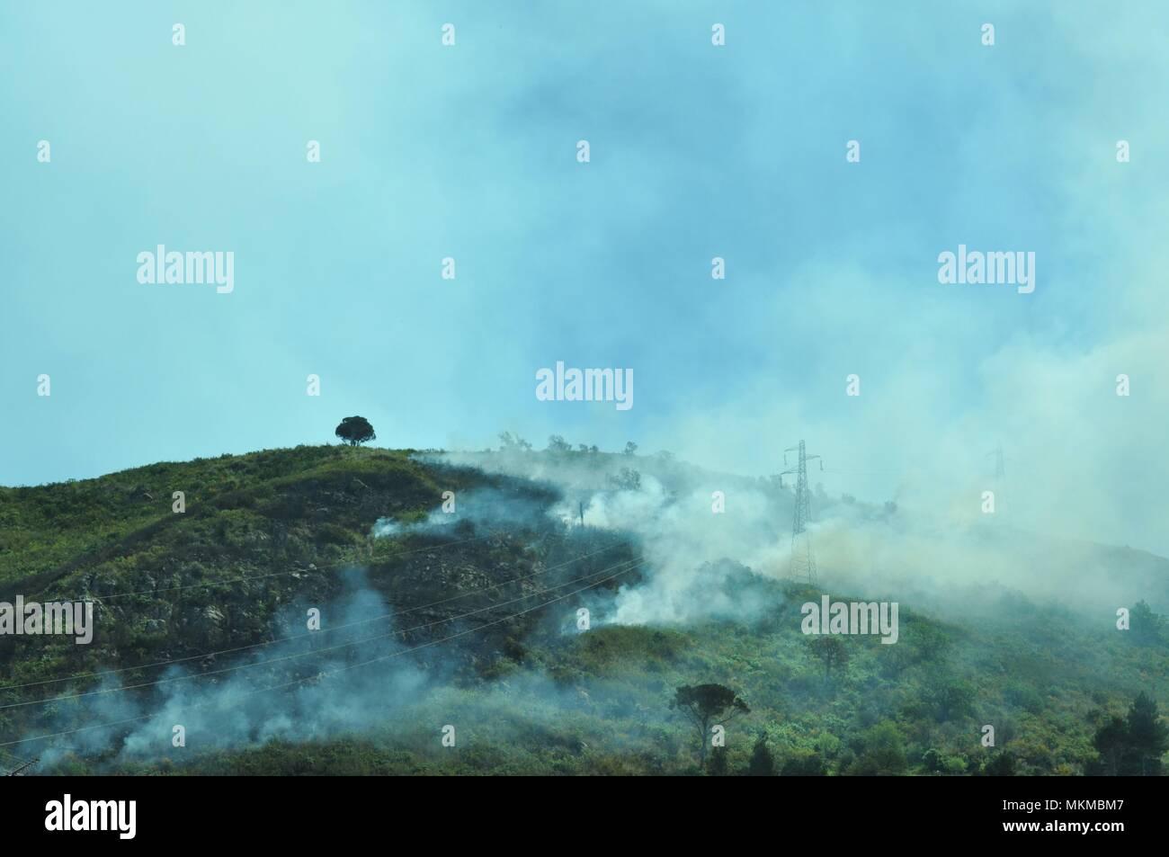 Incendio su una collina, vegetazione in fumo, macchia mediterranea - Stock Image