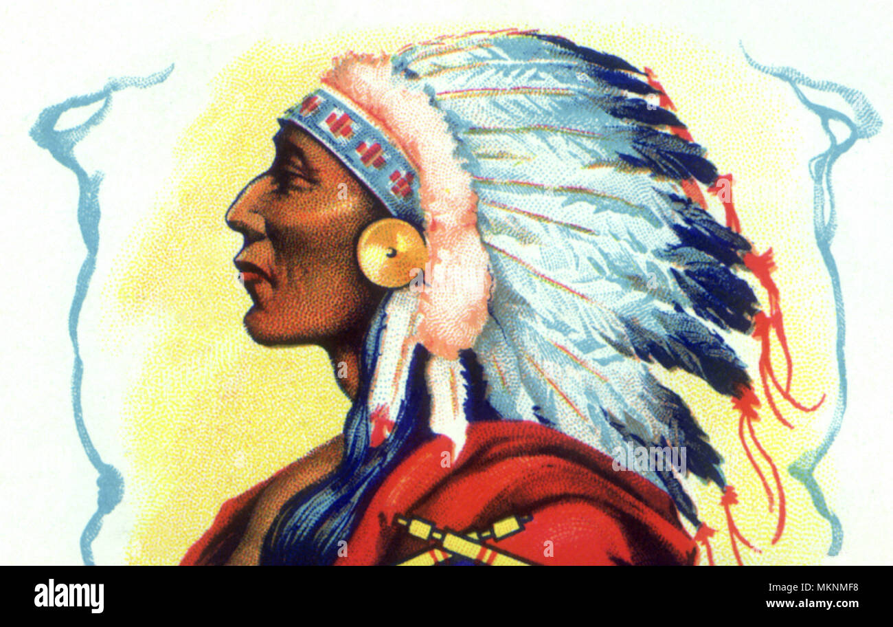 Chief Indian Portrait - Stock Image